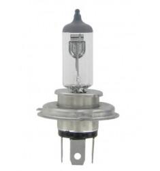Lampe H4 12/24V
