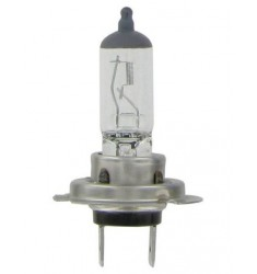Lampe H7 12/24V