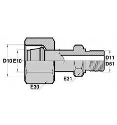 FMG - MGCY : Adapteur Droit Femelle GAZ tournant x Mâle Gaz Cylindrique