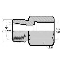 MTG - FGCY : Adapteur Droit Mâle pour tube GAZ MÉTRIQUE x Femelle FIXE GAZ CYLINDRIQUE